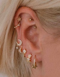 Sly Earrings - Gold Plated