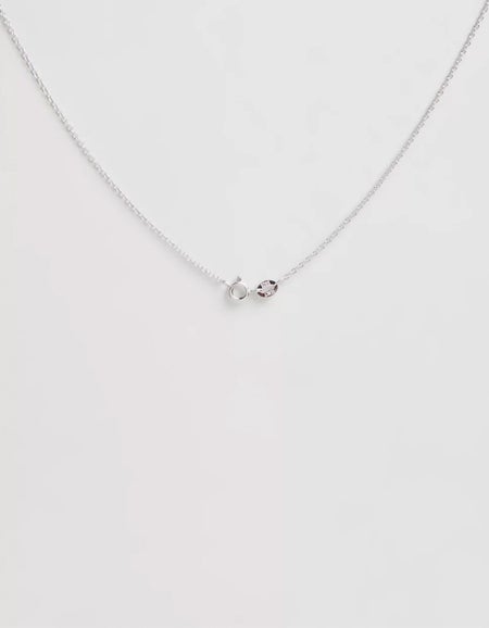 Star Sign Pisces Pendant - Silver